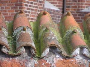 Dvojdílná střešní krytina prejz, používaná hlavně ve středověku. Foto Jom, licence CC BY-SA 3.0