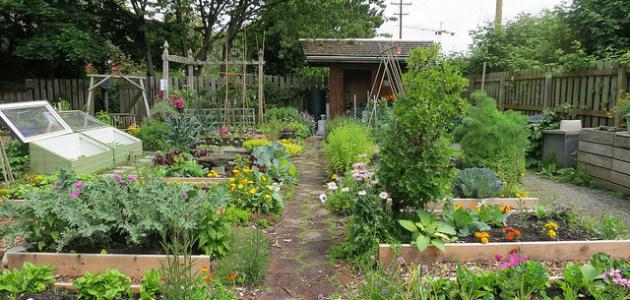 Software pro návrh zahrad