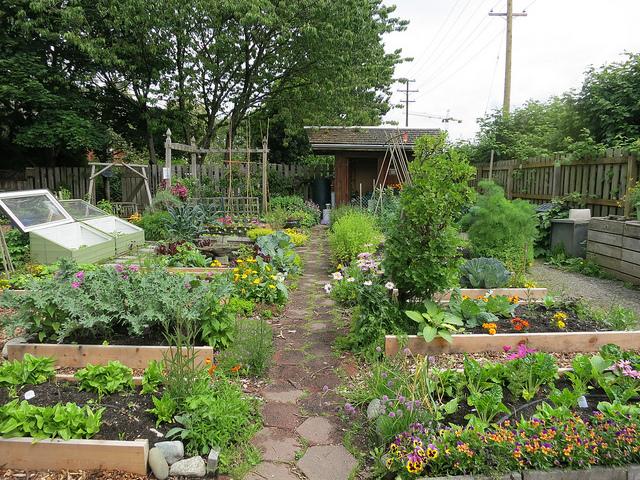 Software Pro Nvrh Zahrad