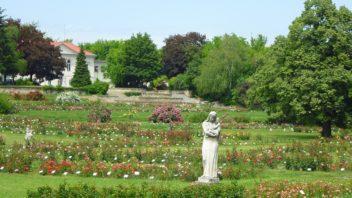 Návod, jak přistoupit k odvodnění vaší zahrady ze správného úhlu